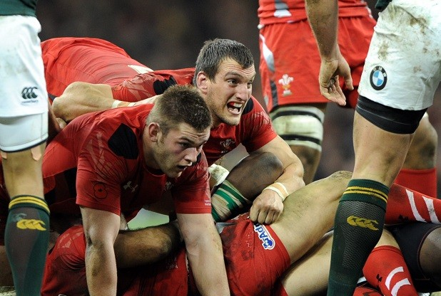 Sport Saturday 9th November 2013 Wales v South Africa Day of the jackals ...Sam Warburton and Dan Lydiate